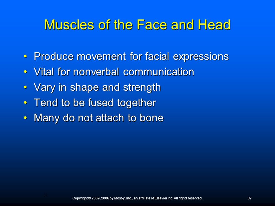 Copyright © 2009, 2006 by Mosby, Inc., an affiliate of Elsevier Inc. All rights reserved.37 Muscles of the Face and Head Produce movement for facial e