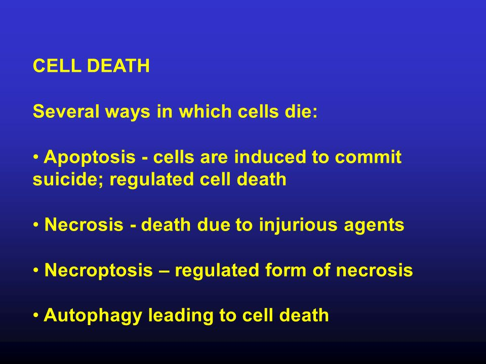 CELL DEATH Several ways in which cells die: Apoptosis - cells are induced to commit suicide; regulated cell death Necrosis - death due to injurious ag
