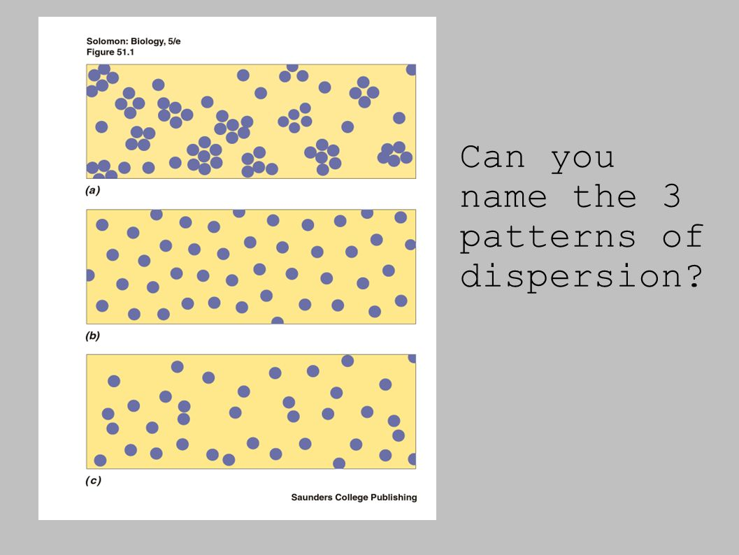 Can you name the 3 patterns of dispersion?