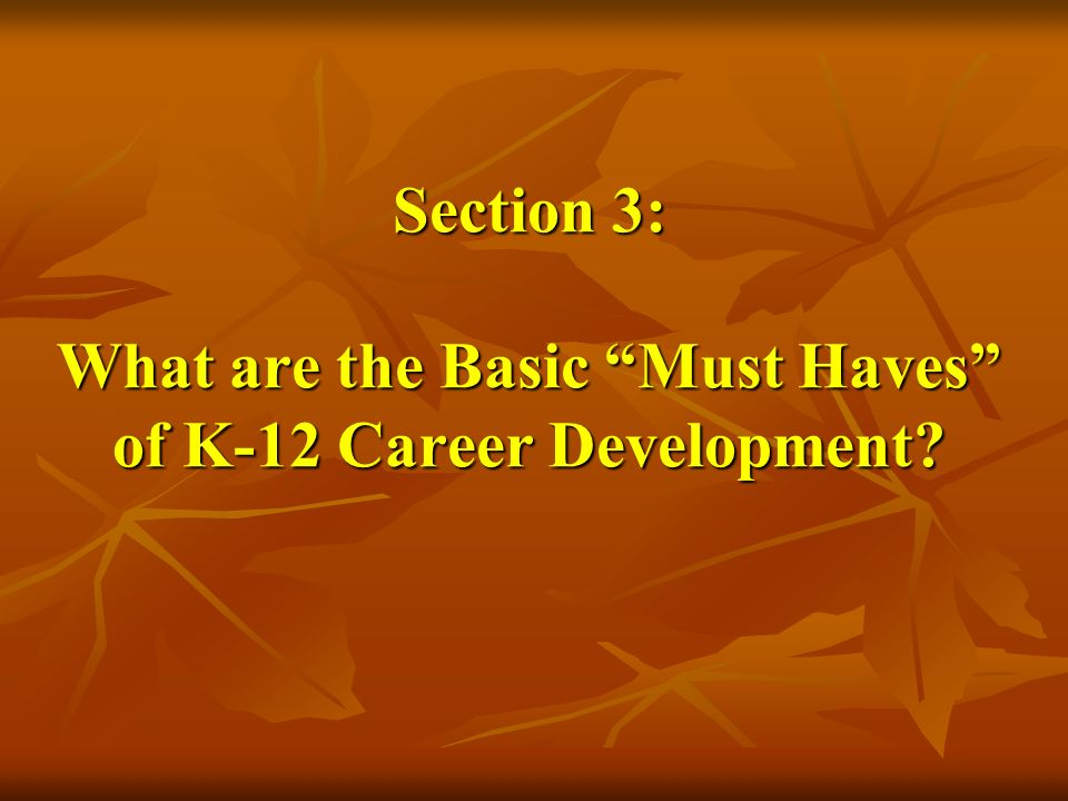 Section 3: What are the Basic Must Haves of K-12 Career Development?