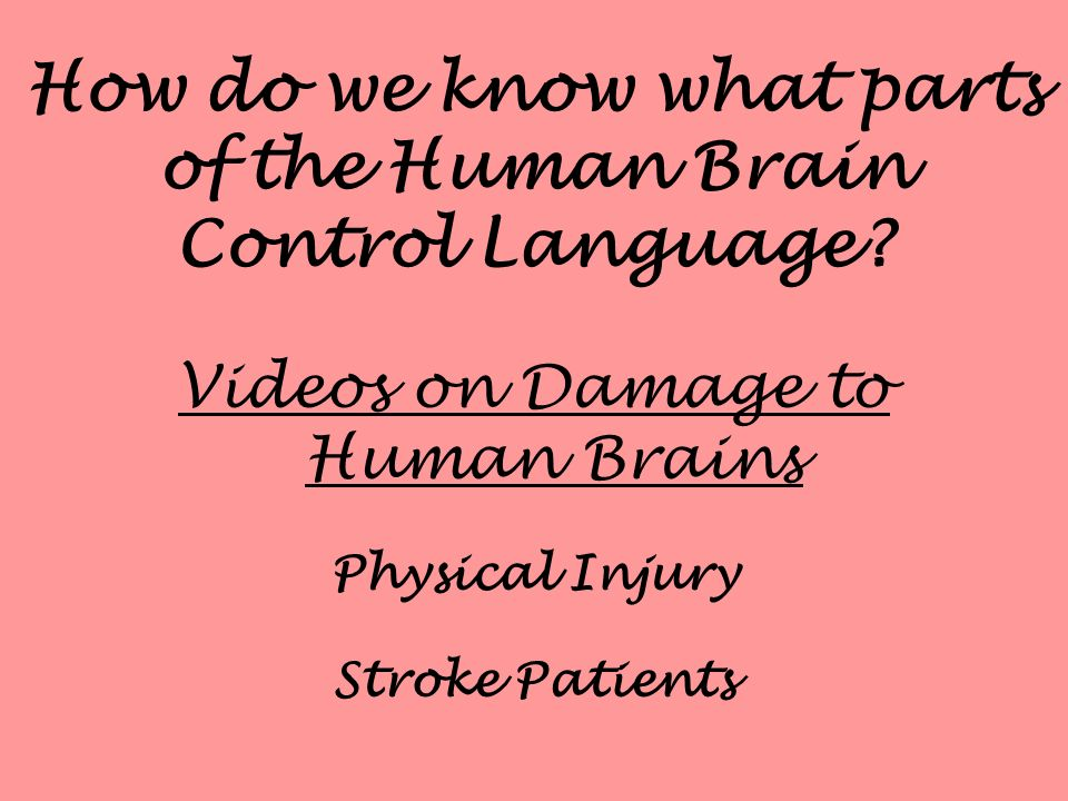 How do we know what parts of the Human Brain Control Language? Videos on Damage to Human Brains Physical Injury Stroke Patients