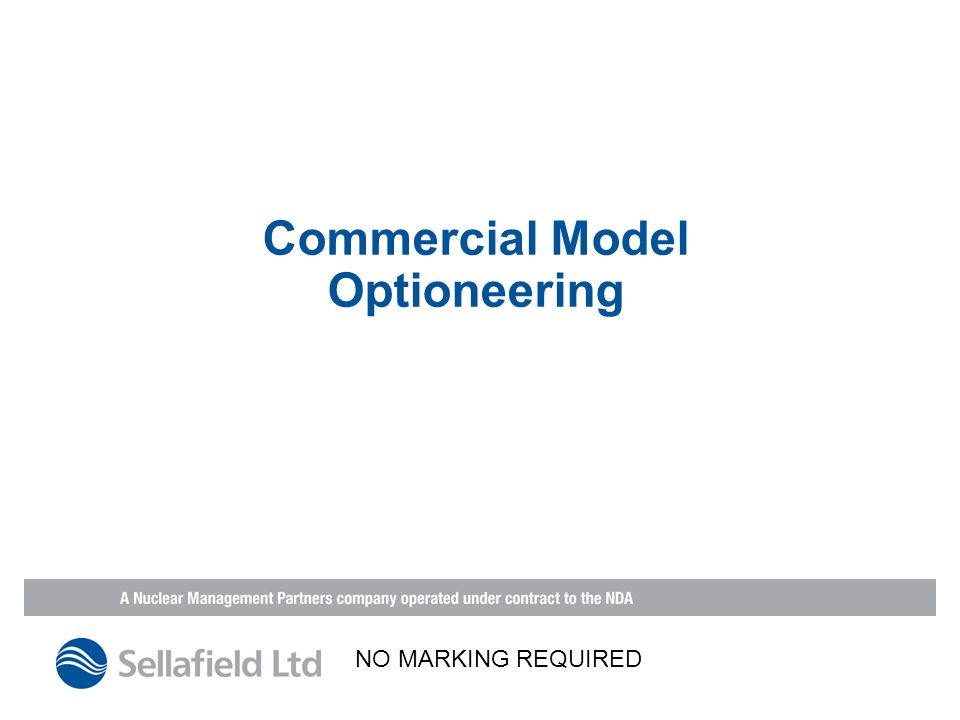 Commercial Model Optioneering NO MARKING REQUIRED