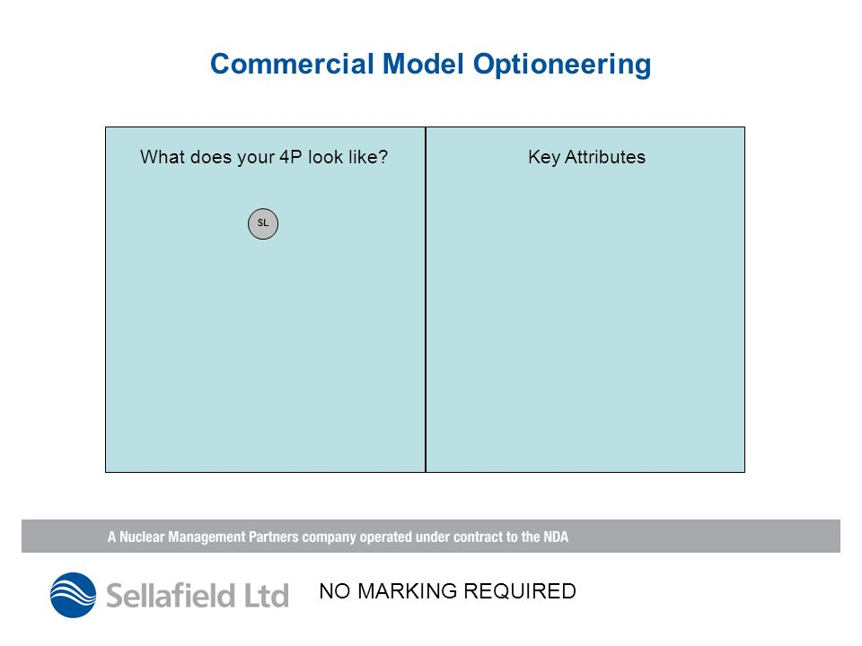 Commercial Model Optioneering What does your 4P look like Key Attributes SL NO MARKING REQUIRED