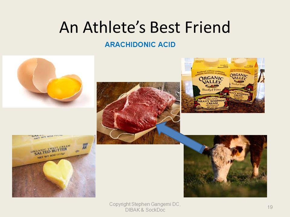 An Athletes Best Friend ARACHIDONIC ACID 19 Copyright Stephen Gangemi DC, DIBAK & SockDoc