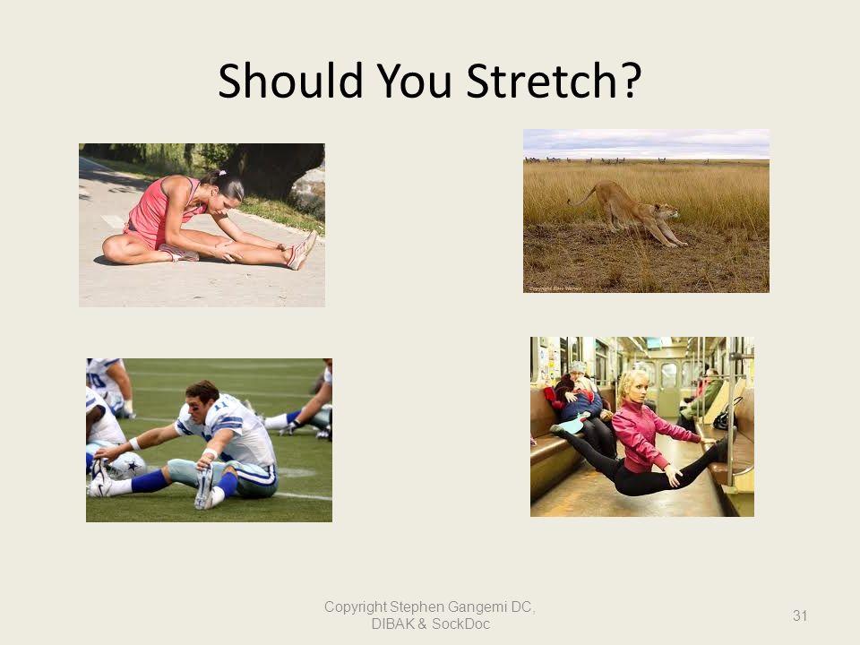 Should You Stretch? 31 Copyright Stephen Gangemi DC, DIBAK & SockDoc