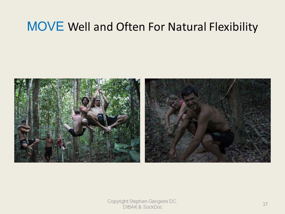MOVE Well and Often For Natural Flexibility 37 Copyright Stephen Gangemi DC, DIBAK & SockDoc