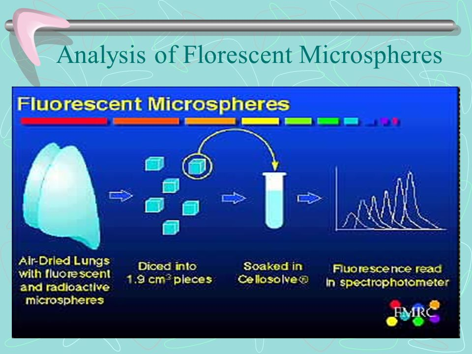 Analysis of Florescent Microspheres