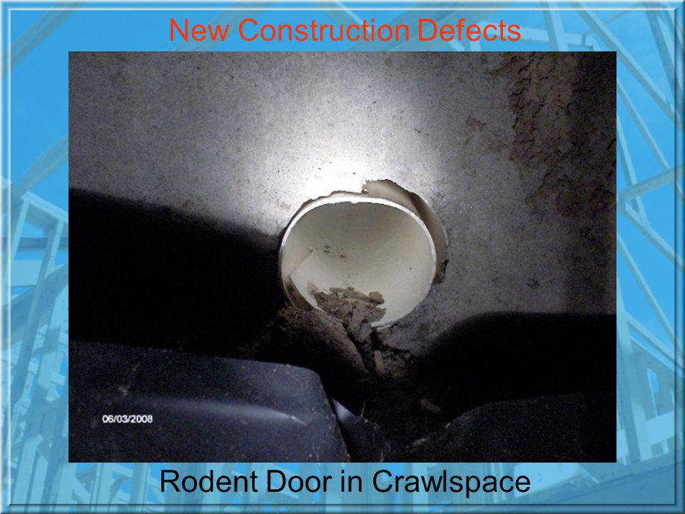 Rodent Door in Crawlspace New Construction Defects