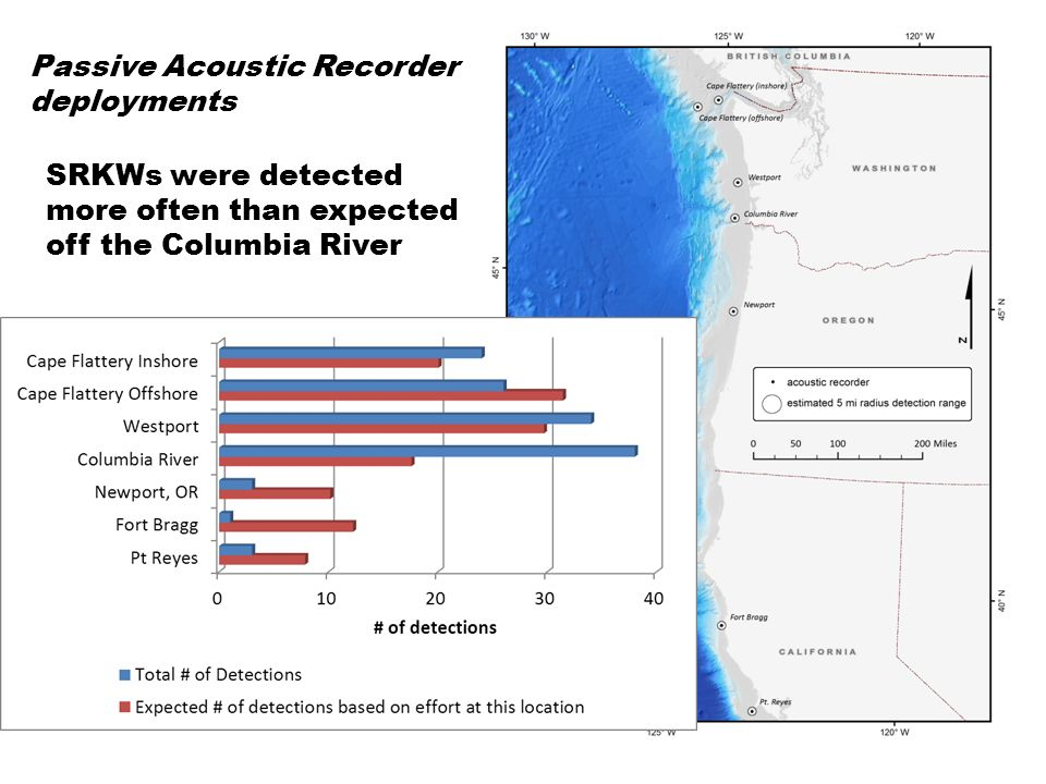 SRKWs were detected more often than expected in 2009 and 2011 Passive Acoustic Recorder deployments