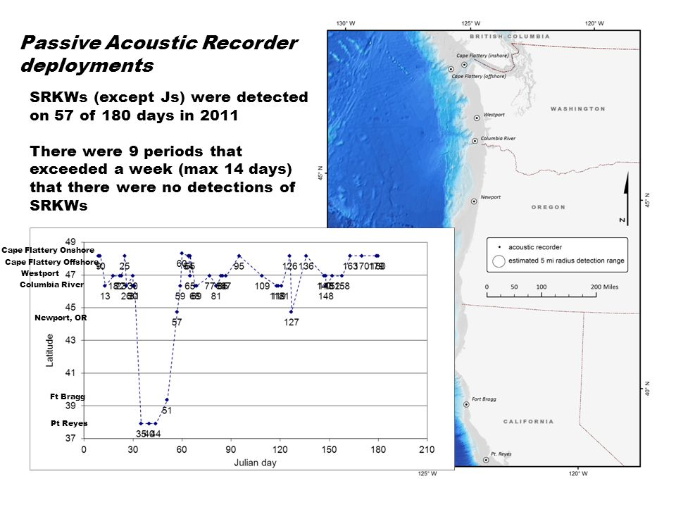 SRKWs calls (not including Js) were detected on only 4 days during 156 days in 2007 No Ls were detected, only Ks Passive Acoustic Recorder deployments