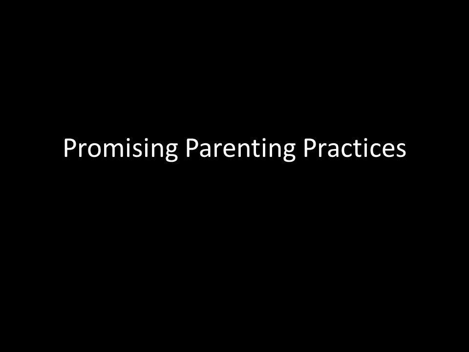 Promising Parenting Practices