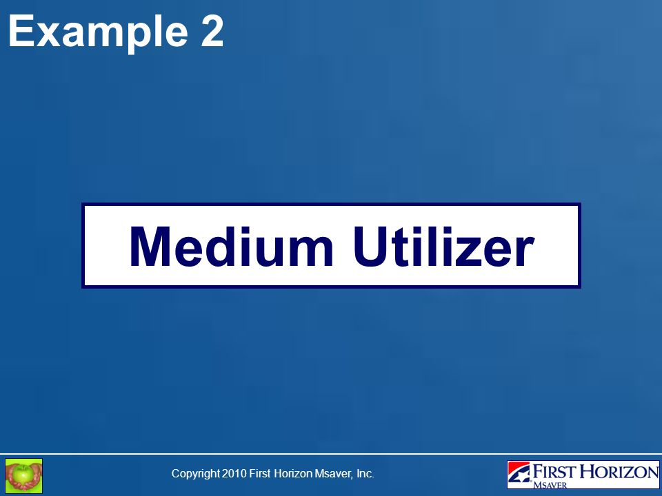 Copyright 2010 First Horizon Msaver, Inc. Example 2 Medium Utilizer
