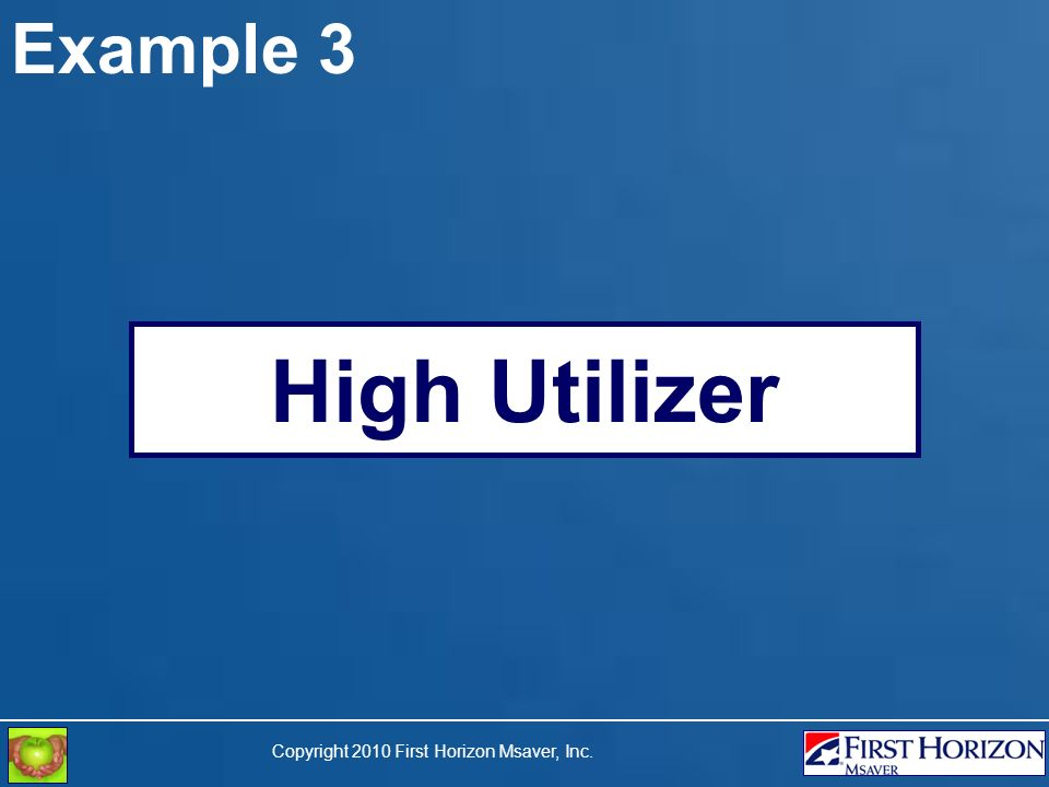 Copyright 2010 First Horizon Msaver, Inc. Example 3 High Utilizer