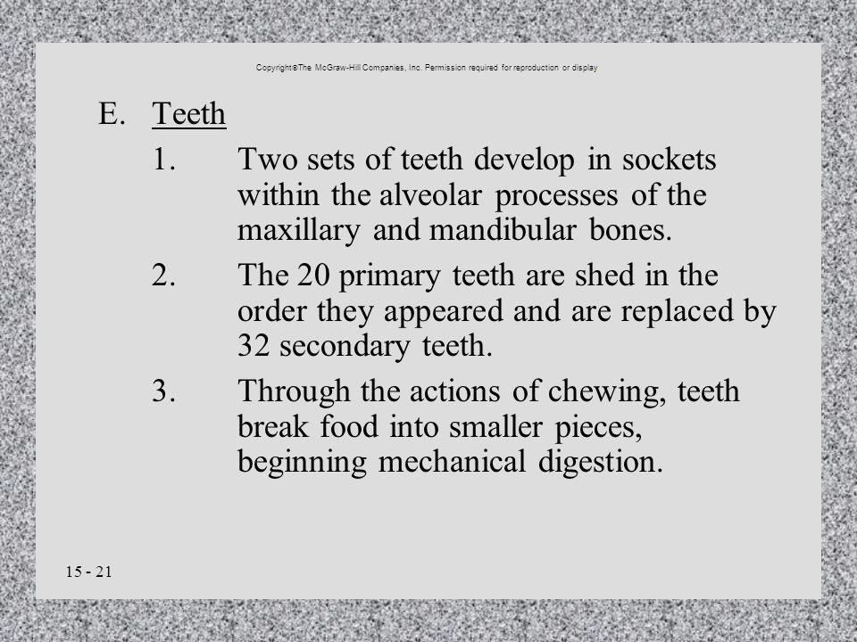 15 - 21 E.Teeth 1.Two sets of teeth develop in sockets within the alveolar processes of the maxillary and mandibular bones. 2.The 20 primary teeth are
