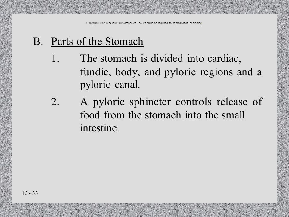 15 - 33 B.Parts of the Stomach 1.The stomach is divided into cardiac, fundic, body, and pyloric regions and a pyloric canal. 2.A pyloric sphincter con