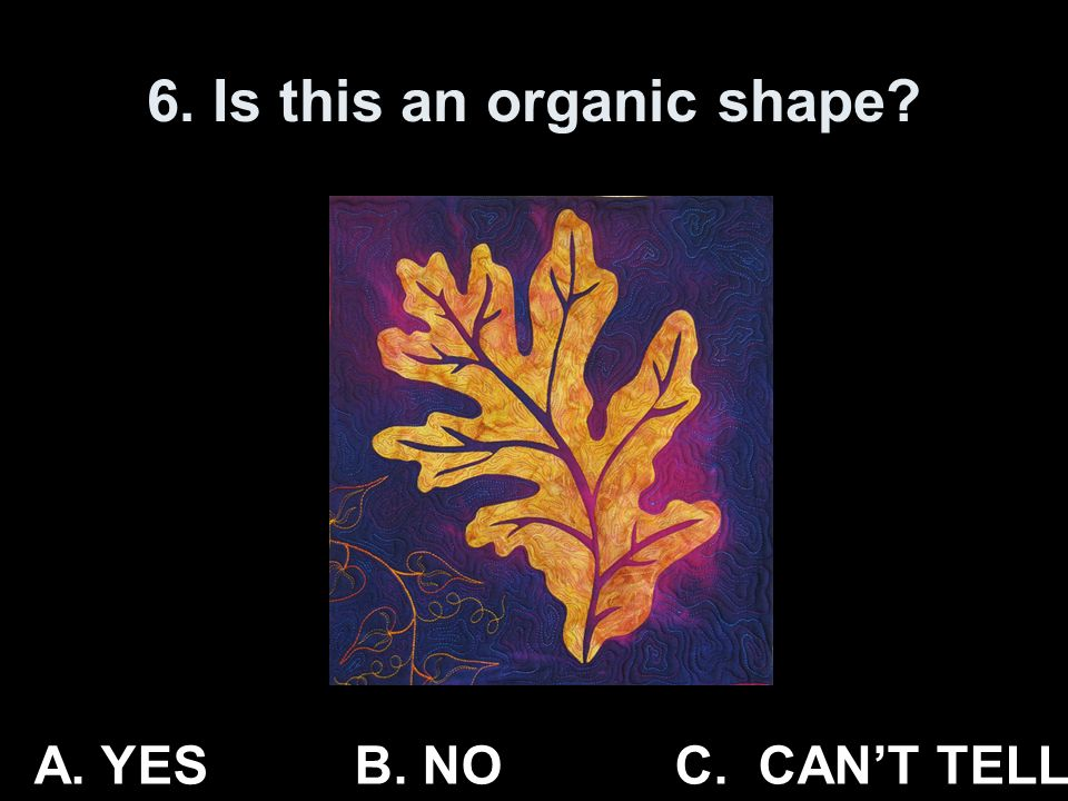 6. Is this an organic shape? A. YESB. NO C. CANT TELL