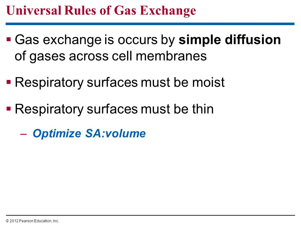 Universal Rules of Gas Exchange Gas exchange is occurs by simple diffusion of gases across cell membranes Respiratory surfaces must be moist Respirato
