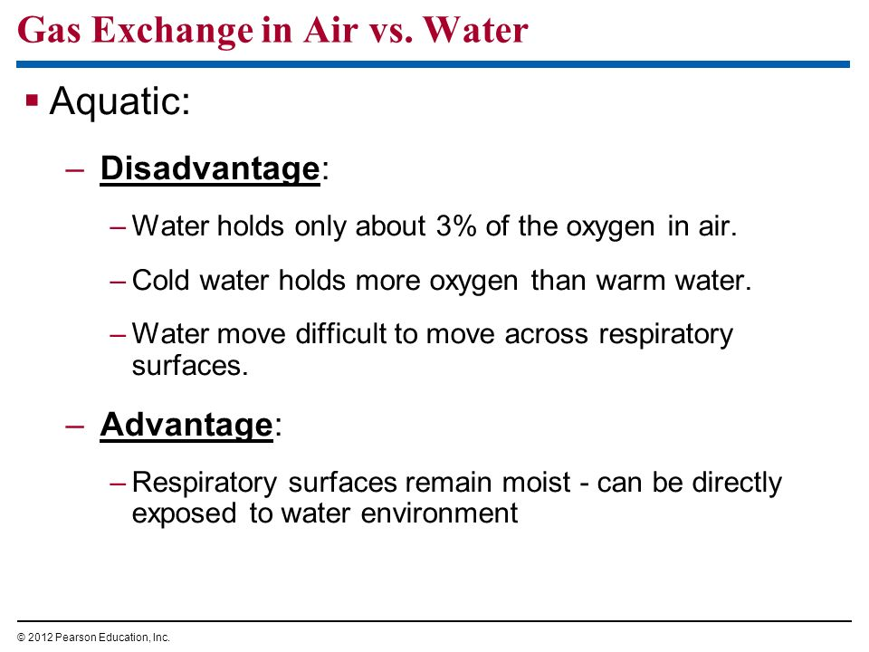 Gas Exchange in Air vs. Water Aquatic: –Disadvantage: –Water holds only about 3% of the oxygen in air. –Cold water holds more oxygen than warm water.