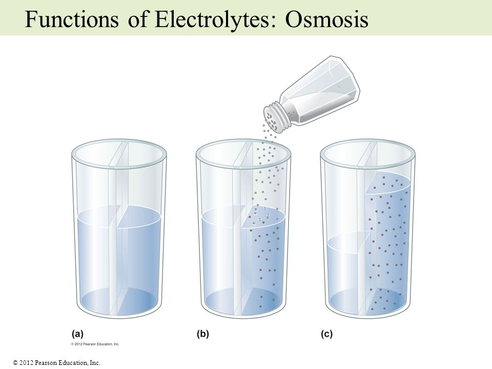 © 2012 Pearson Education, Inc. Functions of Electrolytes: Osmosis