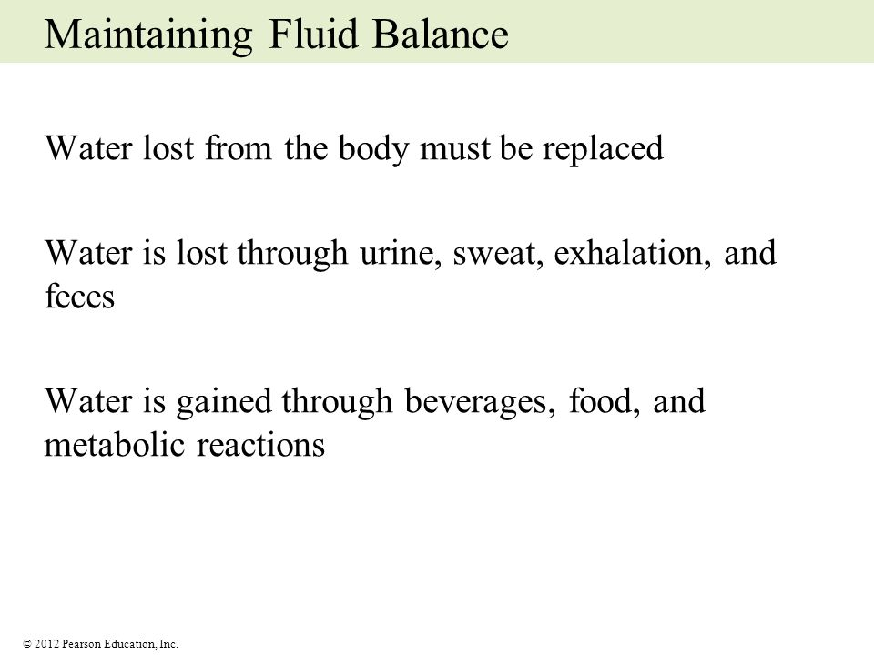 © 2012 Pearson Education, Inc. Maintaining Fluid Balance Water lost from the body must be replaced Water is lost through urine, sweat, exhalation, and