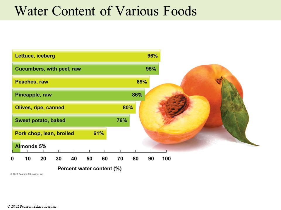 © 2012 Pearson Education, Inc. Water Content of Various Foods