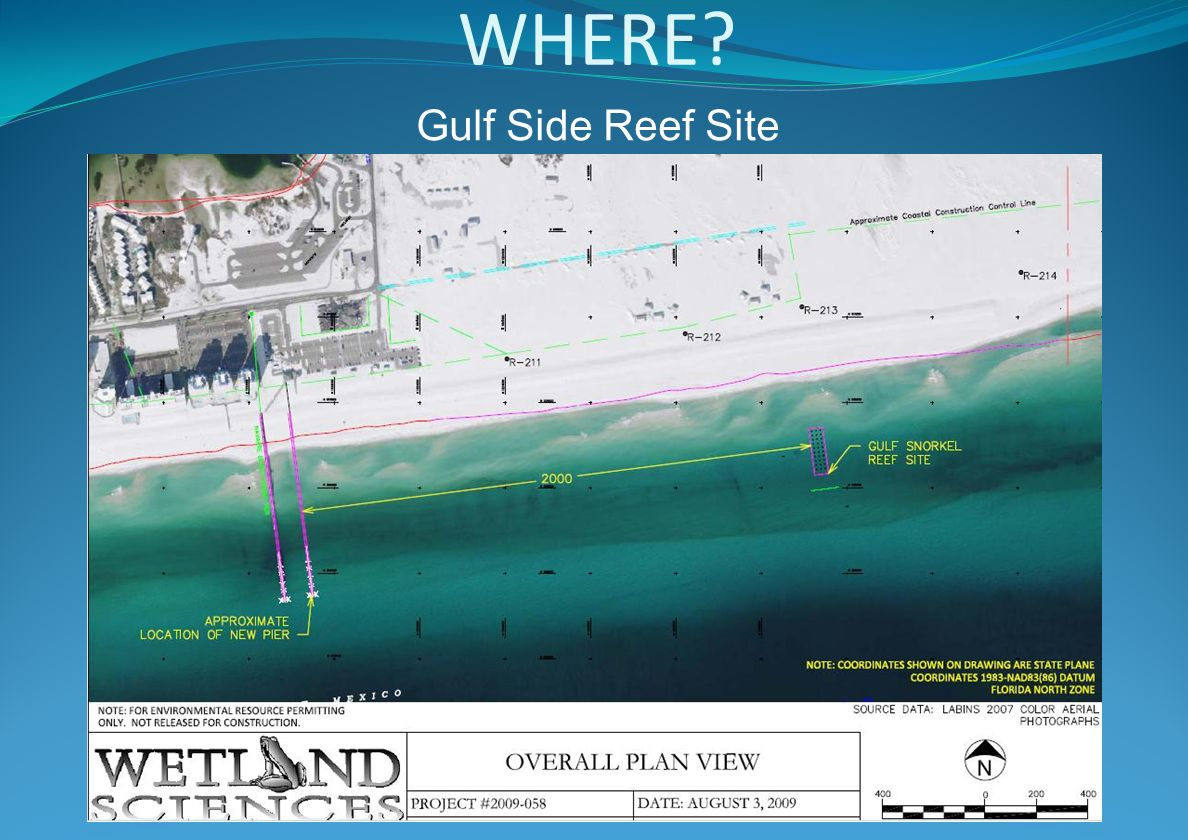 WHERE? Gulf Side Reef Site
