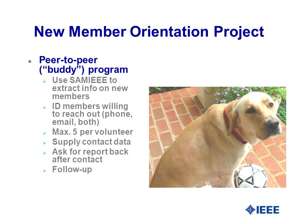 New Member Orientation Project l Peer-to-peer (buddy) program Use SAMIEEE to extract info on new members ID members willing to reach out (phone,  , both) Max.