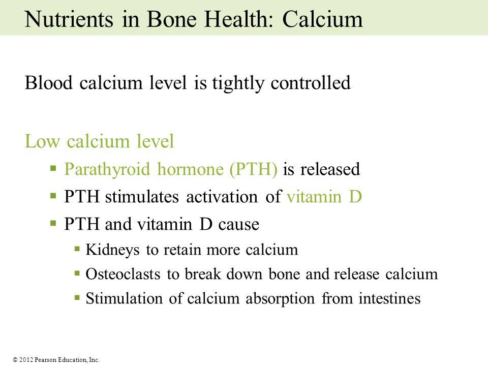© 2012 Pearson Education, Inc. Nutrients in Bone Health: Calcium Blood calcium level is tightly controlled Low calcium level Parathyroid hormone (PTH)