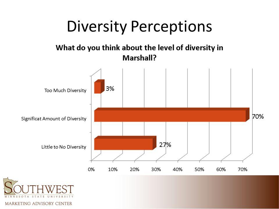 Diversity Perceptions
