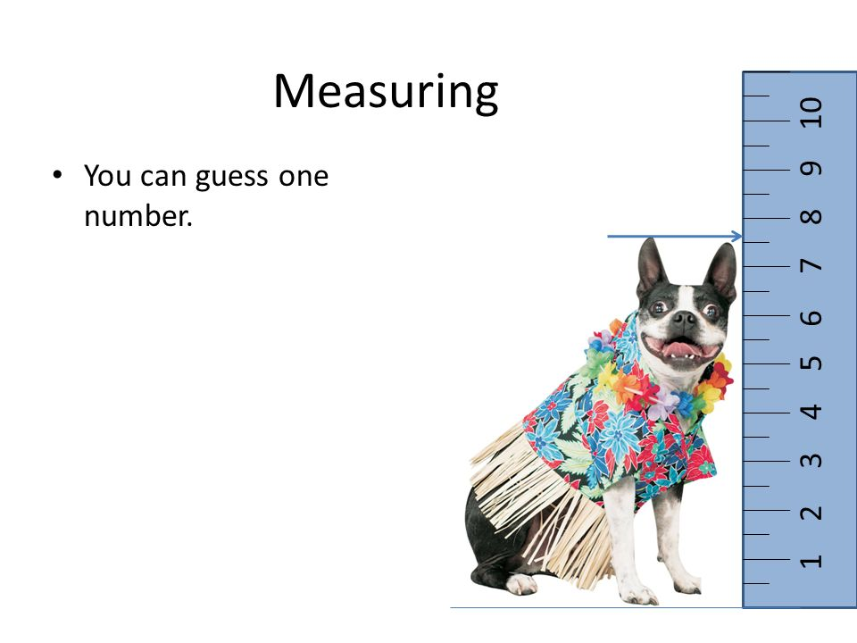 Measuring You can guess one number. 1 2 3 4 5 6 7 8 9 10