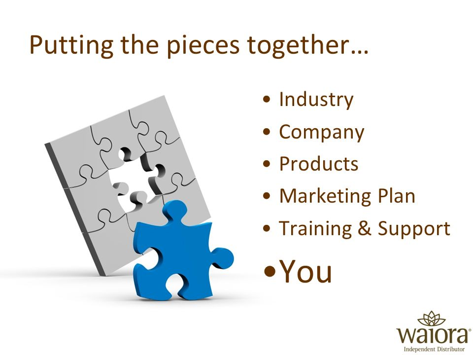 Putting the pieces together… Industry Company Products Marketing Plan Training & Support You