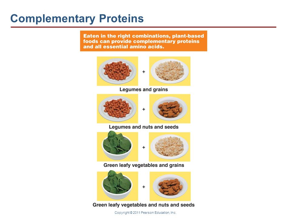 Copyright © 2011 Pearson Education, Inc. Complementary Proteins