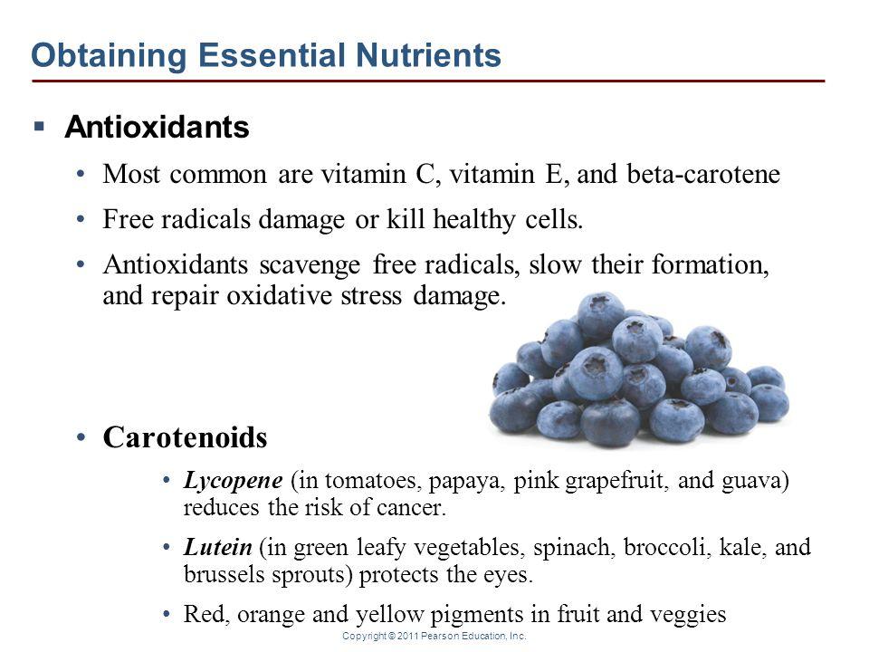 Copyright © 2011 Pearson Education, Inc. Obtaining Essential Nutrients Antioxidants Most common are vitamin C, vitamin E, and beta-carotene Free radic