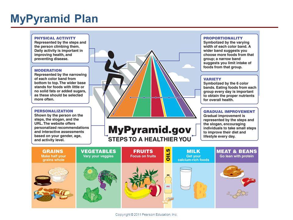 Copyright © 2011 Pearson Education, Inc. MyPyramid Plan