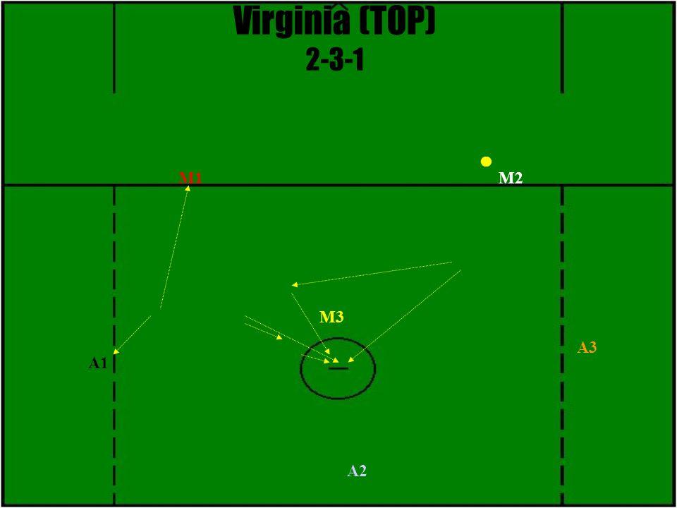 Virginia (TOP) 2-3-1 M3 M1M2 A1 A2 A3