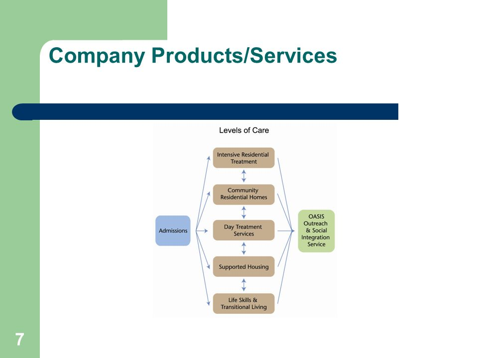 Company Products/Services 7