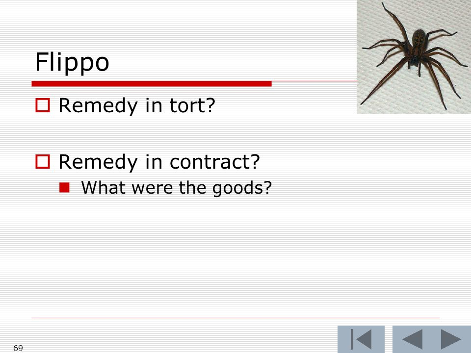 Flippo Remedy in tort? Remedy in contract? What were the goods? 69