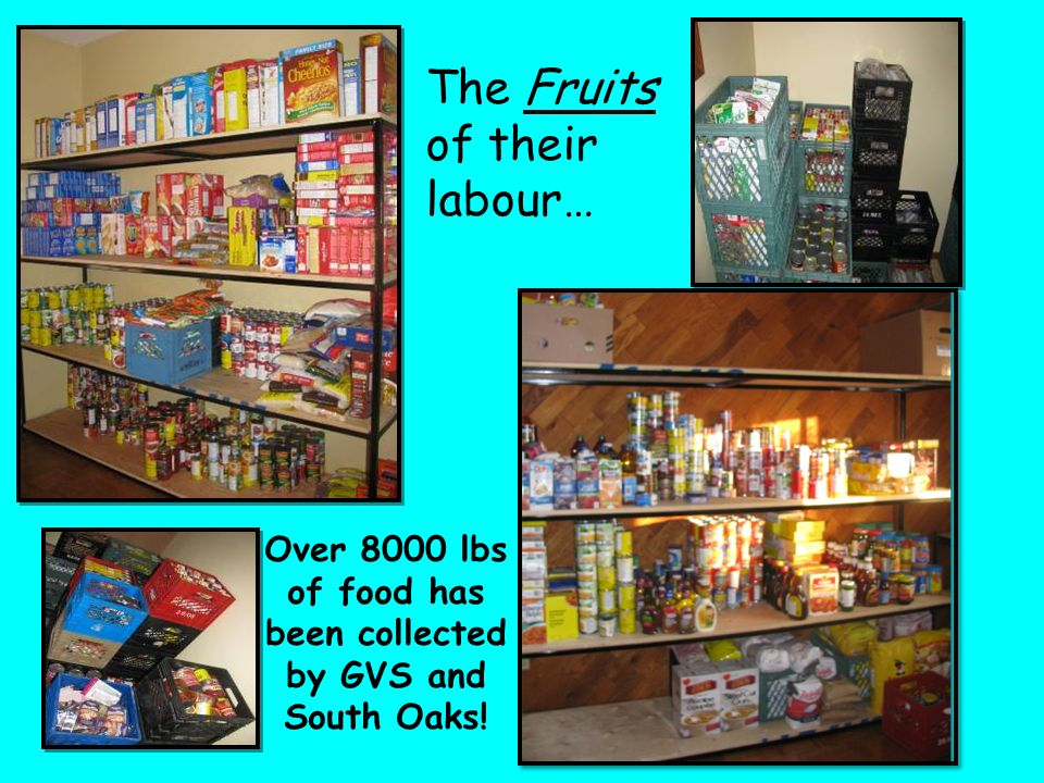 The Fruits of their labour… Over 8000 lbs of food has been collected by GVS and South Oaks!
