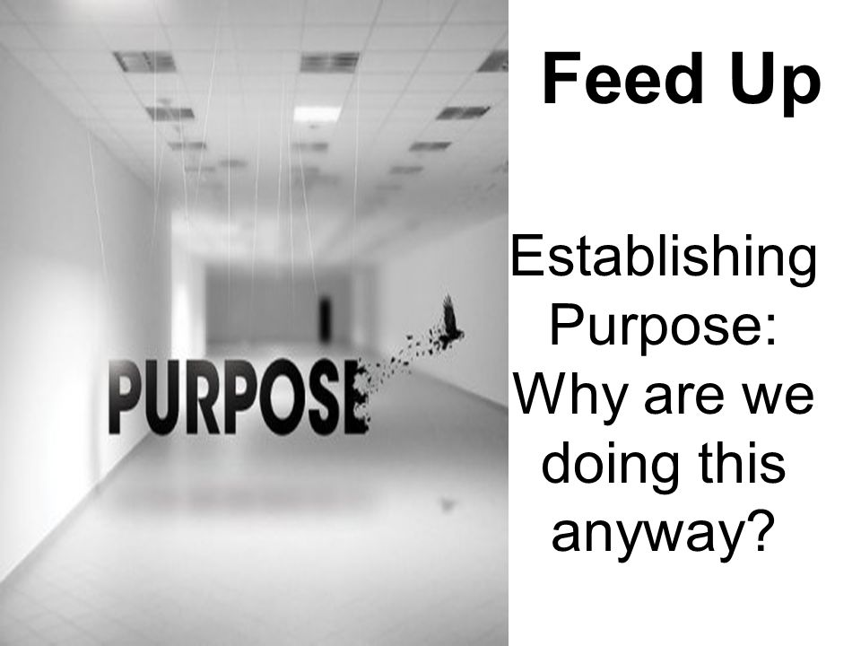Establishing Purpose: Why are we doing this anyway? Feed Up