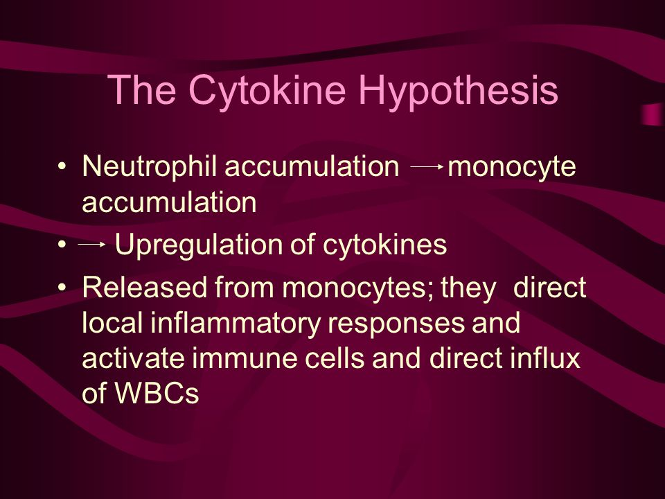 Neutrophil accumulation monocyte accumulation Upregulation of cytokines Released from monocytes; they direct local inflammatory responses and activate immune cells and direct influx of WBCs The Cytokine Hypothesis