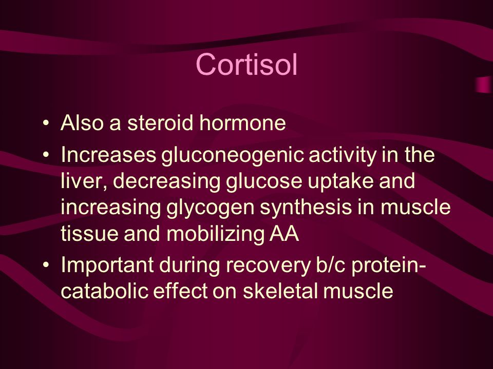 Cortisol Also a steroid hormone Increases gluconeogenic activity in the liver, decreasing glucose uptake and increasing glycogen synthesis in muscle tissue and mobilizing AA Important during recovery b/c protein- catabolic effect on skeletal muscle