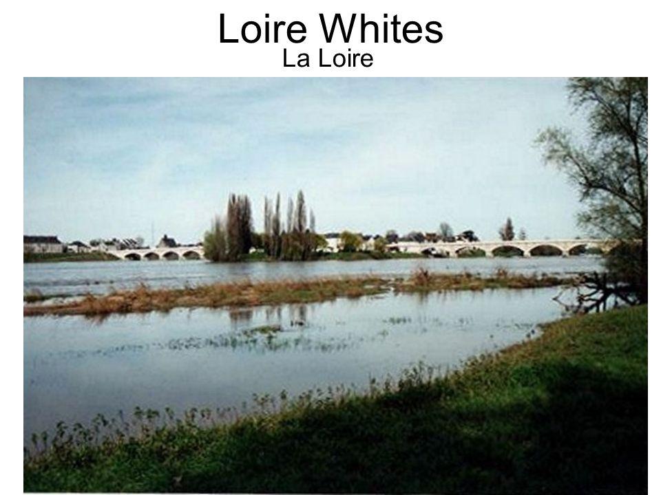 Loire Whites La Loire