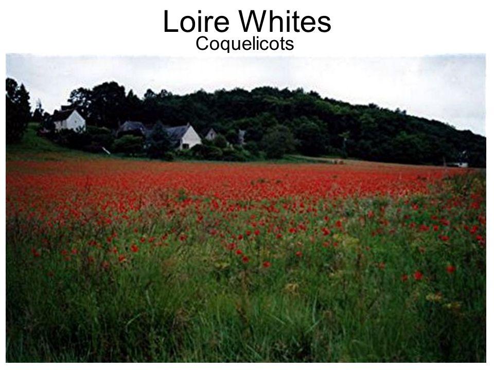 Loire Whites Coquelicots