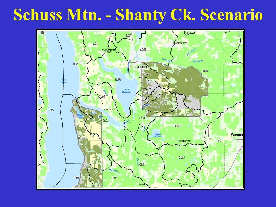 Schuss Mtn. - Shanty Ck. Scenario