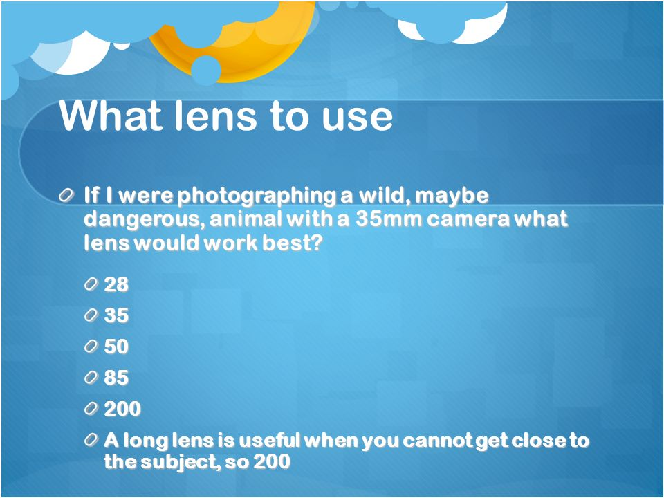 What lens to use If I were photographing a wild, maybe dangerous, animal with a 35mm camera what lens would work best.