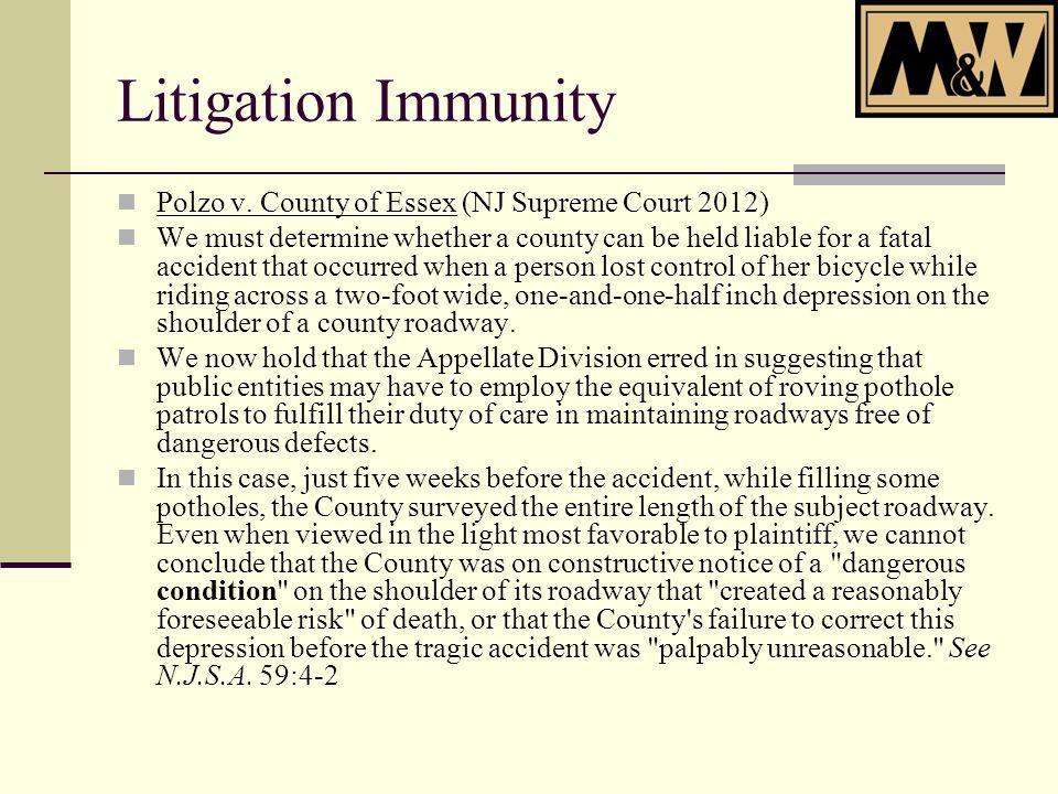 Litigation Immunity Polzo v.