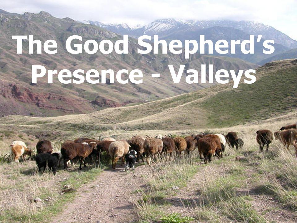 The Good Shepherds Presence - Valleys