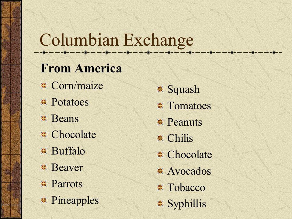 Columbian Exchange From America Corn/maize Potatoes Beans Chocolate Buffalo Beaver Parrots Pineapples Squash Tomatoes Peanuts Chilis Chocolate Avocado