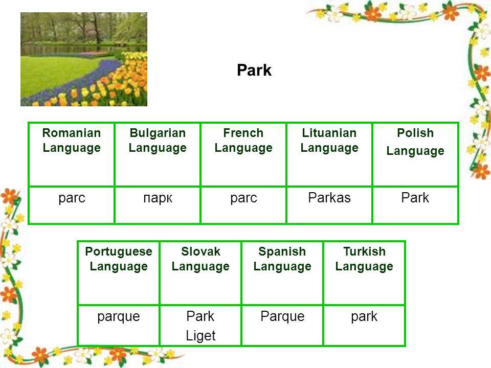 Romanian Language Bulgarian Language French Language Lituanian Language Polish Language parcпаркparcParkasPark Portuguese Language Slovak Language Spanish Language Turkish Language parquePark Liget Parquepark Park