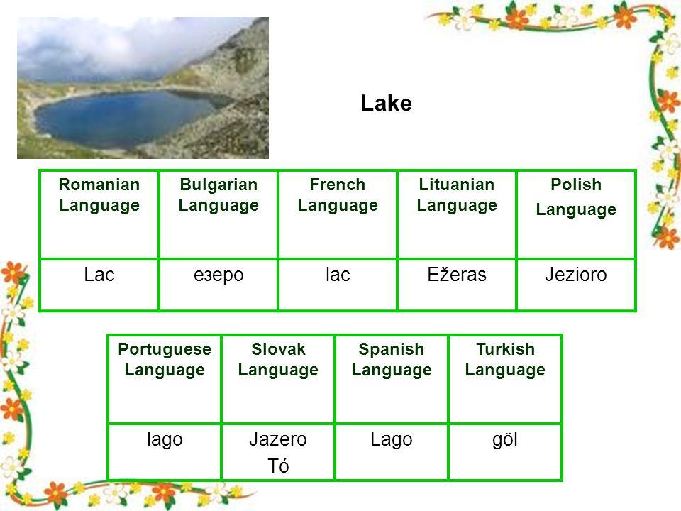 Romanian Language Bulgarian Language French Language Lituanian Language Polish Language LacезероlacEžerasJezioro Portuguese Language Slovak Language Spanish Language Turkish Language lagoJazero Tó Lagogöl Lake